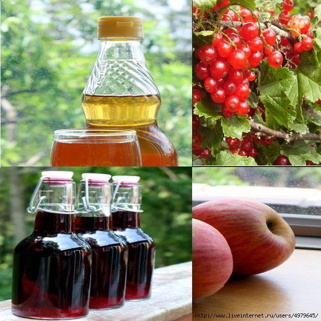 4979645_fruitandberryvinegar (640x640, 226Kb)