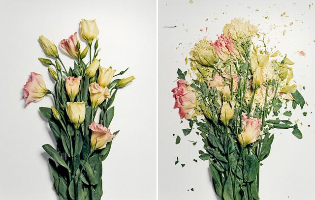 broken-flowers-9 (640x407, 319Kb)