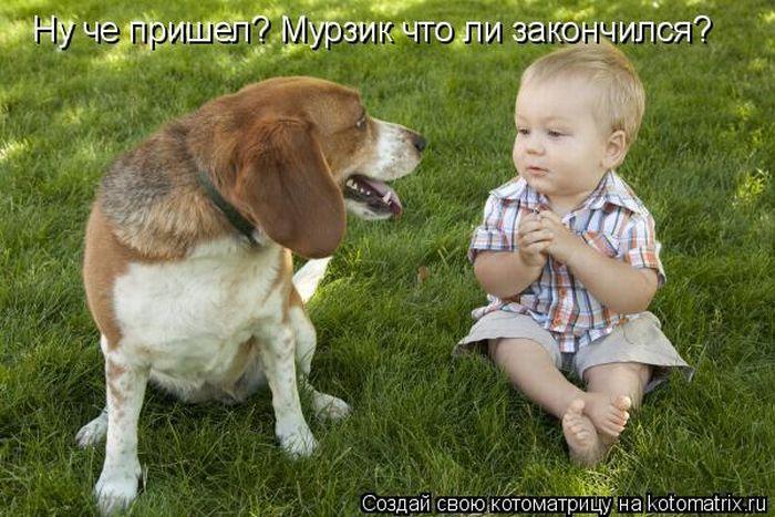 дети и животные/5355770_kotomatrix_47 (700x467, 80Kb)