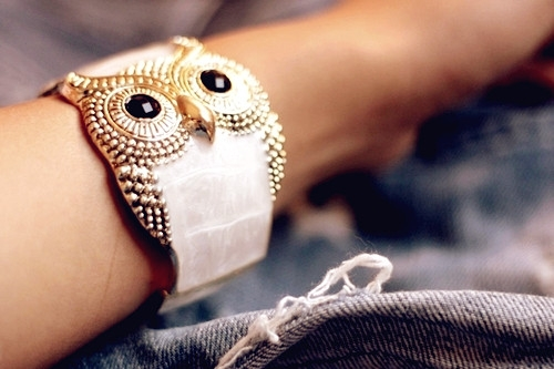 Beautiful-Owl-Braceletes-8 (500x333, 109Kb)