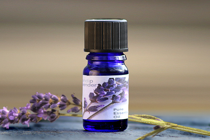 4080226_LavenderOil (700x466, 111Kb)