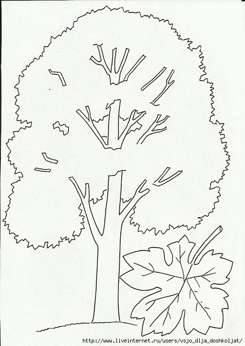 раскраска осенний натюрморт: