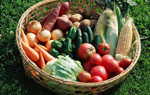 вкусные диетические продукты/4348076_277 (596x380, 385Kb)