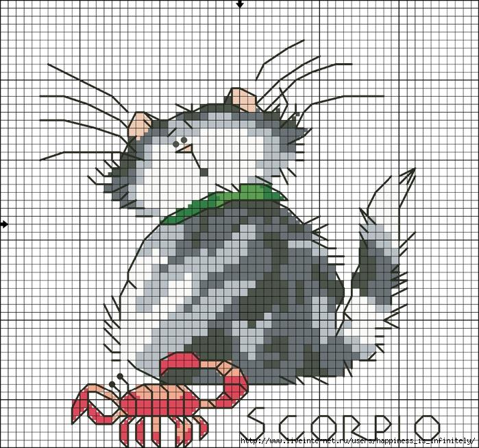 Кот гороскоп Скорпион (700x653