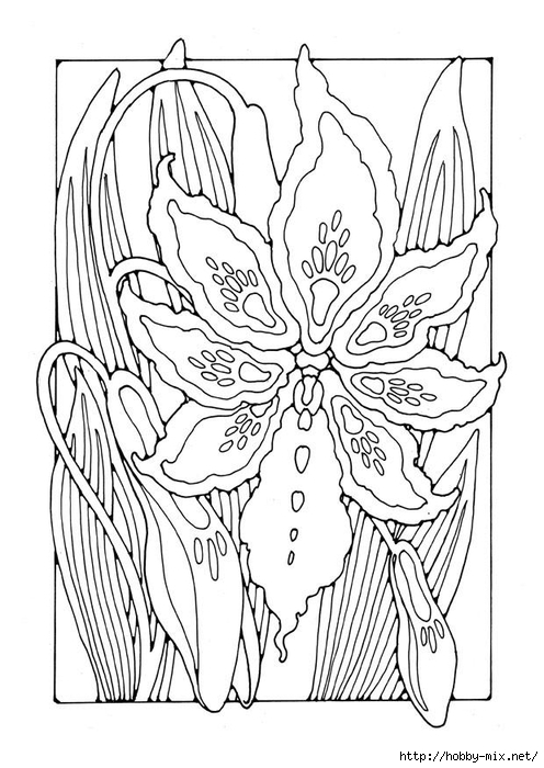 lily-27781 (496x700, 223Kb)