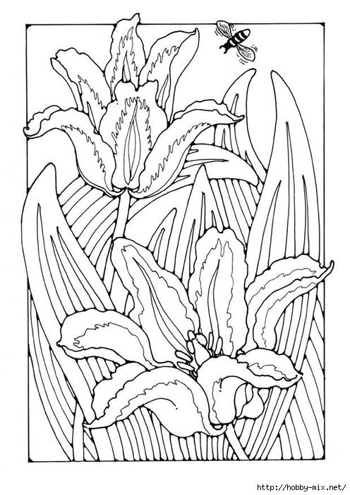 tulips-27778 (496x700, 236Kb)