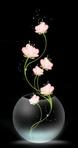 Превью pecera con rosas (368x700, 76Kb)