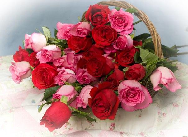 Стихи растут, как звезды и как розы, Как красота - ненужная в семье.  А на венцы и на апофеозы - Один ответ...