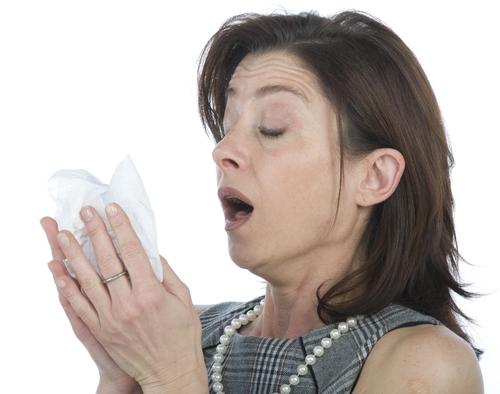 2-allergie_so_lindern_sie_ihre_symptome_1_1 (500x394, 151Kb)