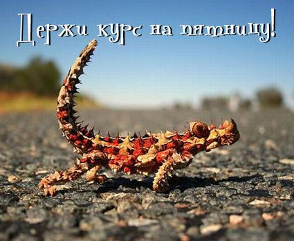 3821971_sreda_1_ (425x348, 53Kb)