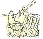 ob'emnii-stolbik (147x132, 5Kb)