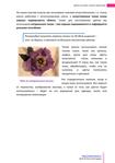 Превью Цветы из ткани_5 (494x700, 136Kb)