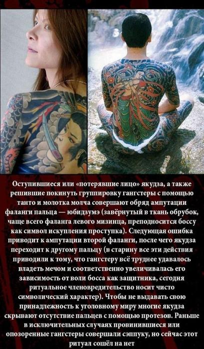 fakty_o_jakudze_11_foto_10 (409x700, 261Kb)