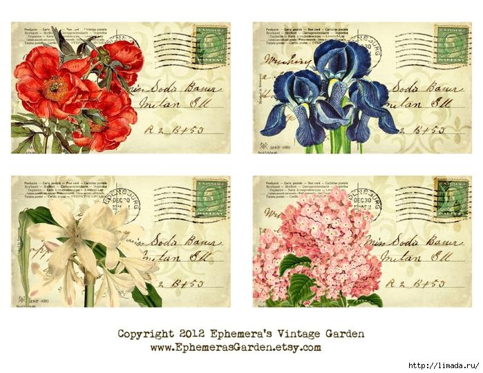 BotanicalPostcardsSheet (700x540, 316Kb)