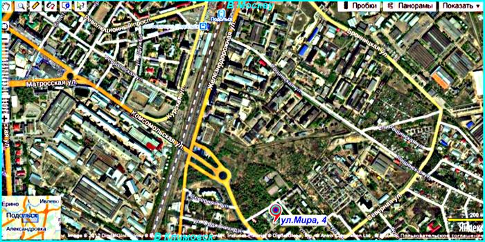 1379077401_Podolsk_ZiO_vystavka_sobak_Amigo (700x350, 611Kb)