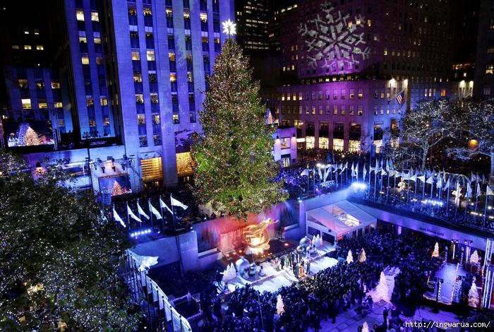 Beautiful-Christmas-trees-around-the-world-_-www.pixanews-8 (700x470, 406Kb)