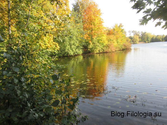 Золотая осень в Серебряном бору (700x525, 91Kb)