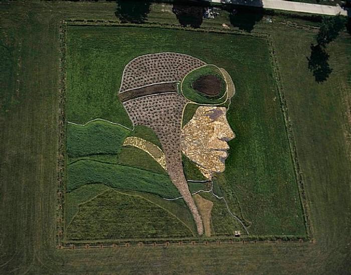 Стэн Херд картины на полях 1 (700x548, 374Kb)
