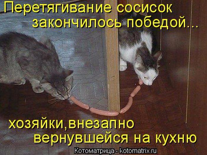 1443385573_09 (700x525, 378Kb)