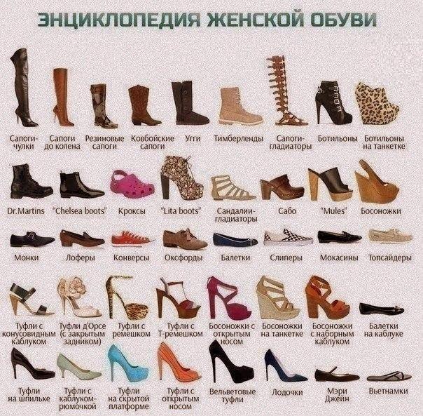 женская обувь (604x593, 408Kb)
