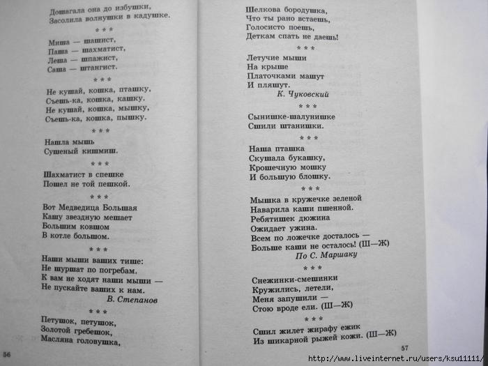 500_stishkov_dlya_zaryadki_yazychkov.page30 (700x525, 220Kb)