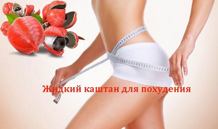 2835299_Jidkii_kashtan_dlya_pohydeniya (700x415, 158Kb)