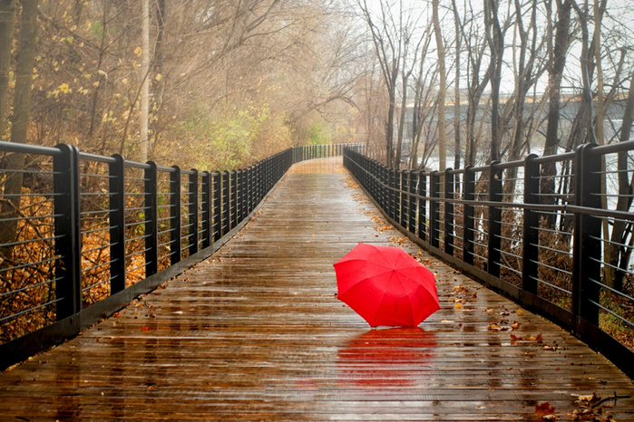Red-Umbrella-In-Rainy-Day-2880x1920 (700x466, 510Kb)