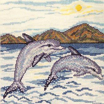 3807000_delfin_krestom (336x339, 45Kb)