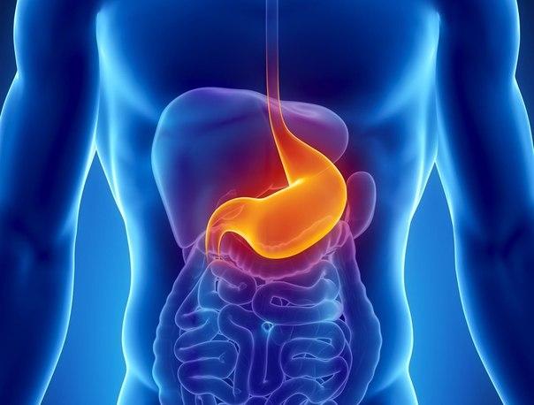 Лечение язвы желудка народными средствами. (604x458, 41Kb)