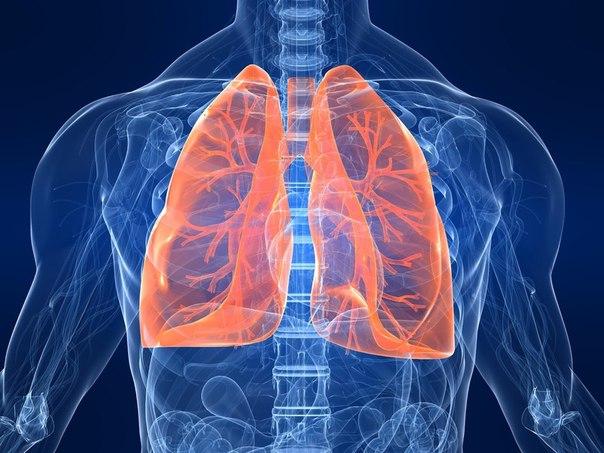 Очищение лёгких и продление жизни древнеиндийским способом (604x453, 69Kb)