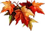 Клипарт осенние листьяS (150x105, 27Kb)