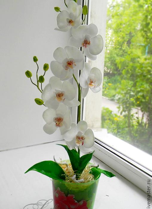 Видео как пересаживать орхидею