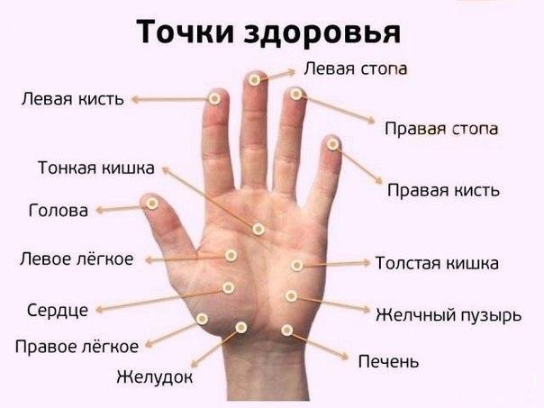 5222098_246198734_1_644x461_divankiev_1_ (604x453, 39Kb)