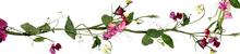 4815934_0_816a9_68ea7eff_orig (220x50, 23Kb)