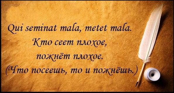 Латинские фразы цитаты
