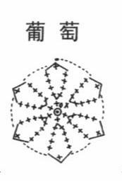Шарфик крючком с виноградной обвязкой (9) (173x256, 16Kb)