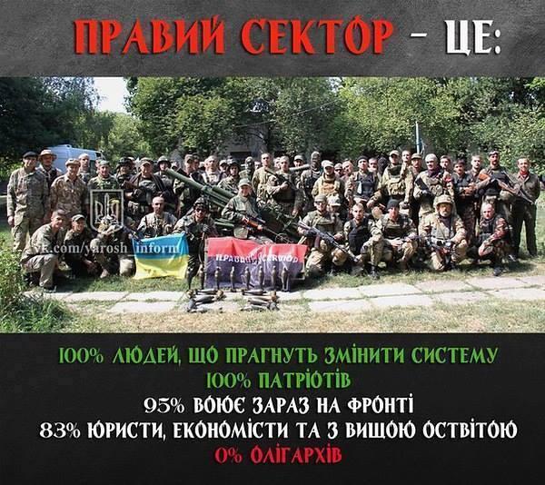 3745438_pravii_sektor (600x534, 78Kb)
