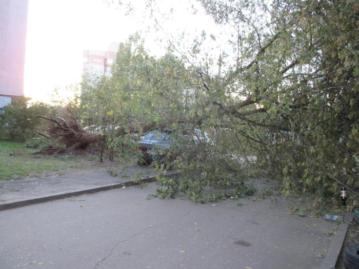 Ярославль, ветер10а (700x525, 390Kb)