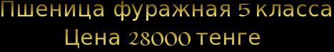 cooltext140905543755428 (468x53, 19Kb)