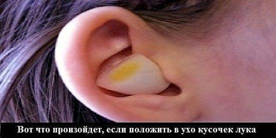 image (548x274, 31Kb)