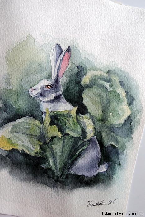 акварель Кролик в капусте от Shraddha 21) (1) (466x700, 287Kb)