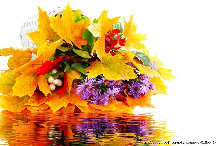 buket-listya-cvety-osen-voda (700x467, 259Kb)