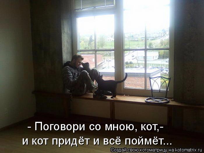 kotomatritsa__ (1) (700x525, 219Kb)