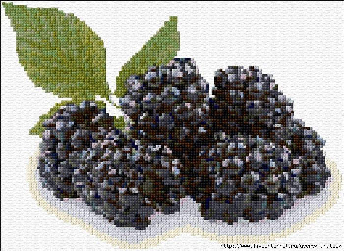 Blackberries-1167-O-Free-Design (700x511, 405Kb)