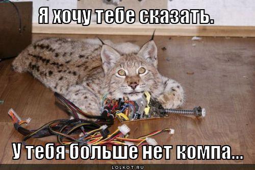 3577132_kompabolshenet_1345732403 (500x334, 44Kb)