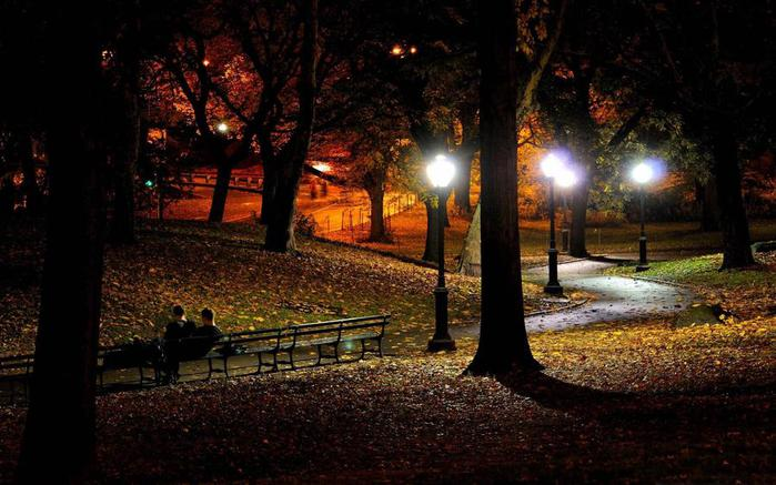Nature_Seasons_Autumn_Night_park_035795_ (700x437, 58Kb)