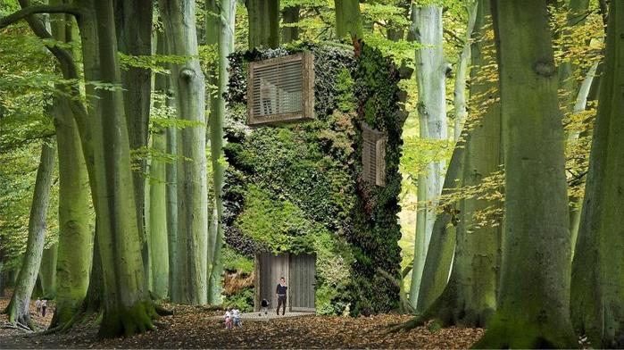 зеленые здания Oas1s 2 (700x392, 365Kb)