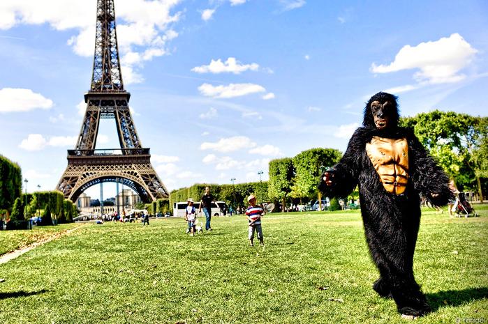 King-Kong-in-Paris_fhdr (700x465, 190Kb)