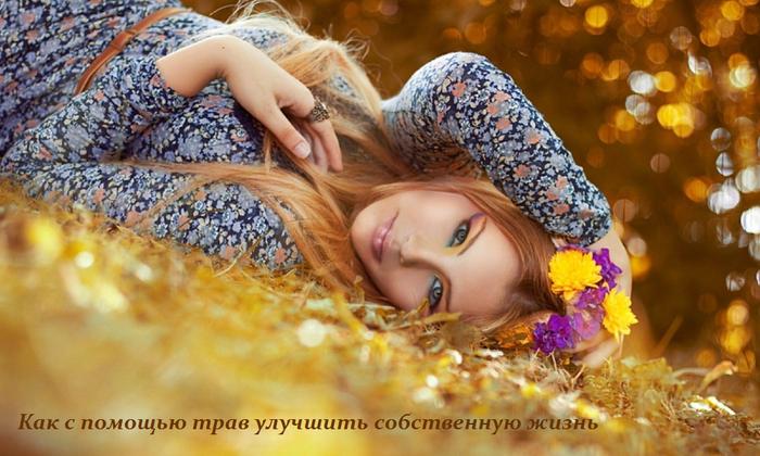 1445356008_Kak_s_pomosch_yu_trav_uluchshit__sobstvennuyu_zhizn_ (700x420, 536Kb)