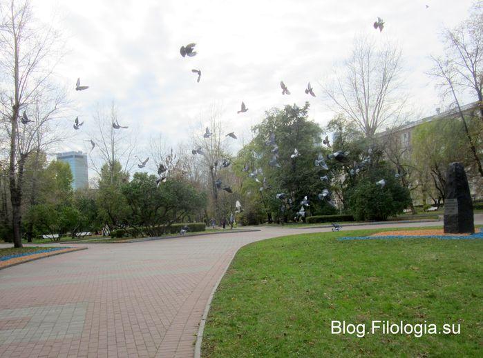 Статья летящих голубей в сквере на Красной Пресне (699x519, 64Kb)